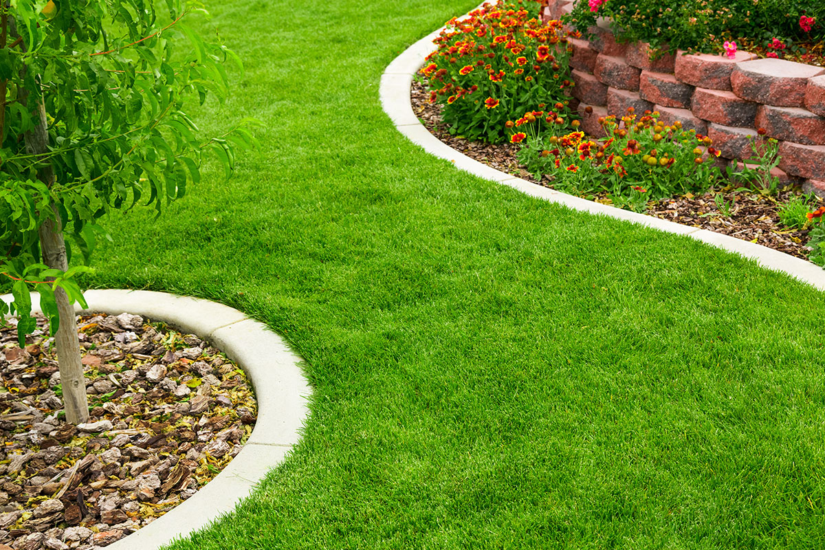 Preparing Your Park City Landscape For Spring Park City Landscaping