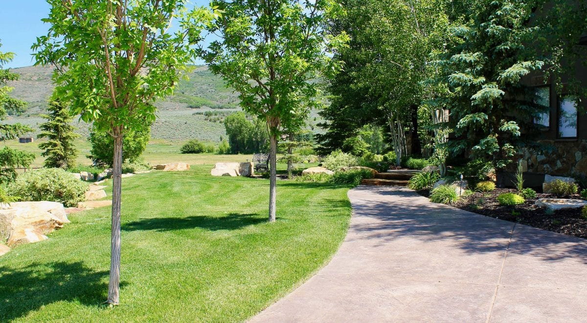 Park city landscaping expert landscaping and lawn for Landscape design utah